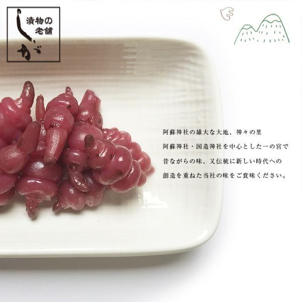 ちょろぎ漬け(国産)2袋セット 送料無料 ちょろぎ 希少|kousa-youmanzyou|02