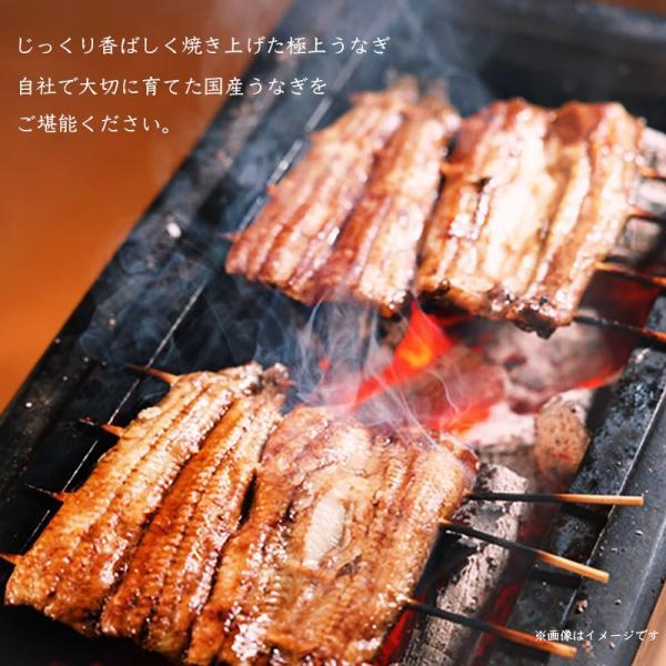 うなぎ蒲焼き 国産 鰻 2尾セット(170g×2尾)贈答用 送料無料(離島を除く)|kousa-youmanzyou|03