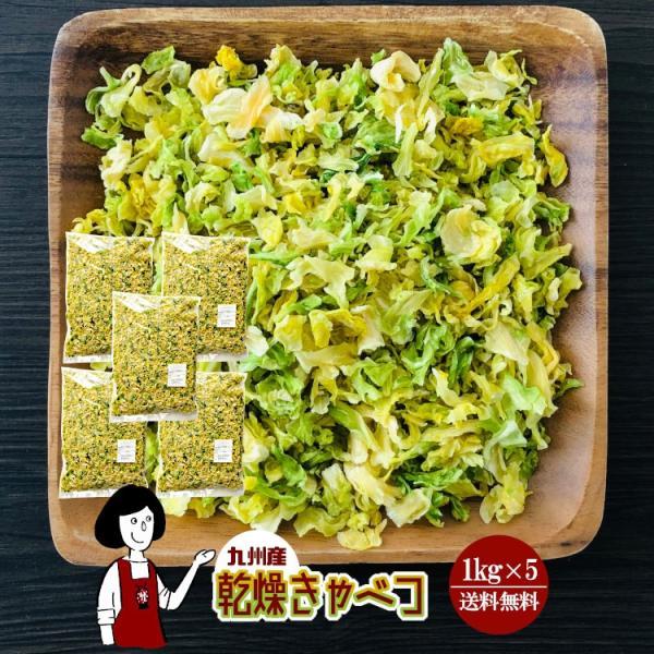 九州産 乾燥キャベツ 1kg×5