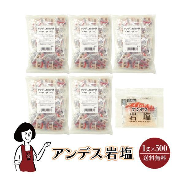 アンデス岩塩 1g×500袋