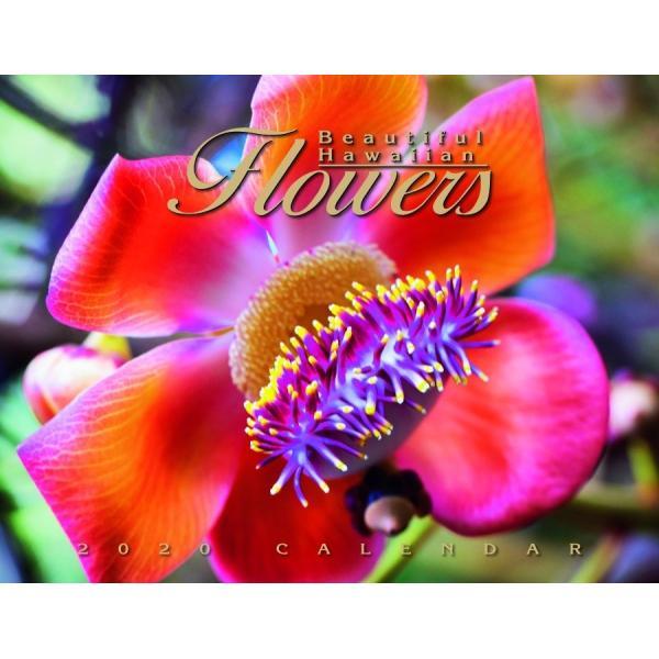送料無料! 2020年 ハワイカレンダー Beautiful Hawaiian Flowers  美しいハワイの花々 2020 ハワイアン雑貨|koyomi10