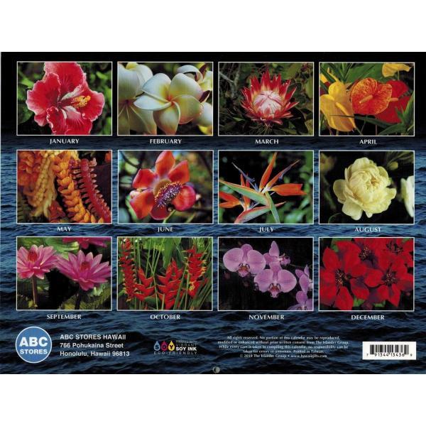 送料無料! 2020年 ハワイカレンダー Beautiful Hawaiian Flowers  美しいハワイの花々 2020 ハワイアン雑貨|koyomi10|02