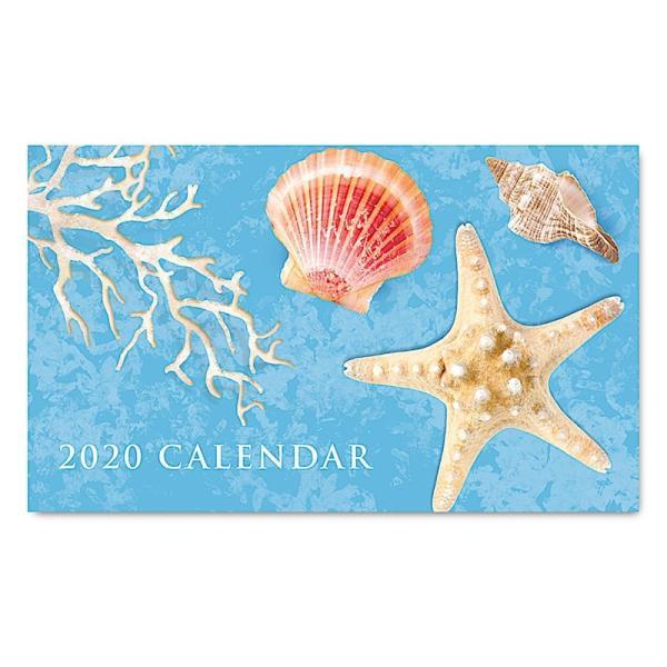 2020年ハワイカレンダー(ミニサイズ)ハワイアンダイアリー/スケジュール帳/マンスリーカレンダー Island Shells アイランド・シェル|koyomi10