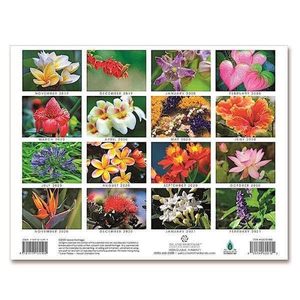 送料無料! 2020年 アイランドヘリテイジ社製 ハワイ カレンダー (16カ月カレンダー) Flowers of Hawaii ハワイの花々 2020 ハワイアン雑貨 koyomi10 02