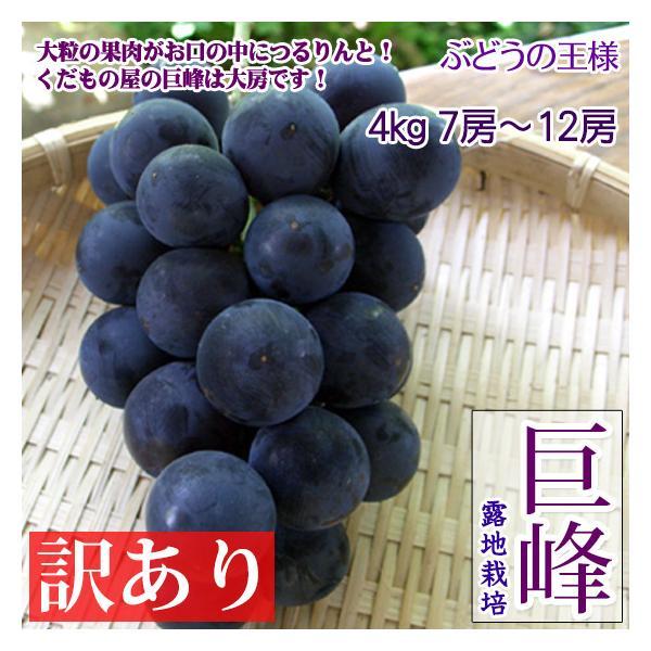 巨峰 訳あり 4kg7-12房 ぶどうの一大産地・長野産 レアブドウ 送料無料