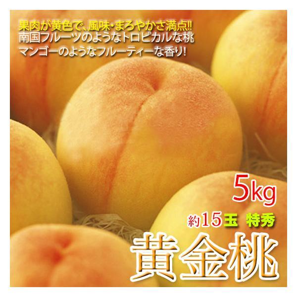 黄金桃 5キロ 約15玉 特秀品 桃 もも
