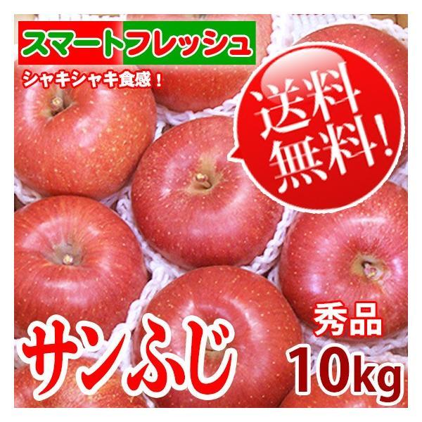 サンふじ りんご [送料無料]  「スマートフレッシュ」貯蔵 信州産 10kg 22~36玉 秀品 リンゴ