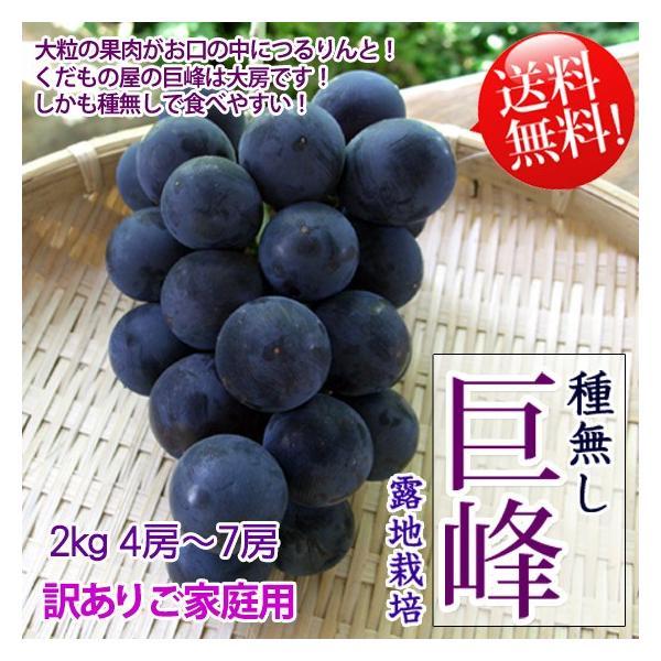 種無し巨峰 訳あり 2kg4-7房 送料無料 今では希少ブドウ!