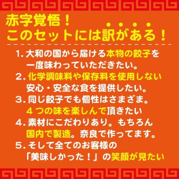 4種の創作餃子 食べ比べセット|kuihuku-hourai|03