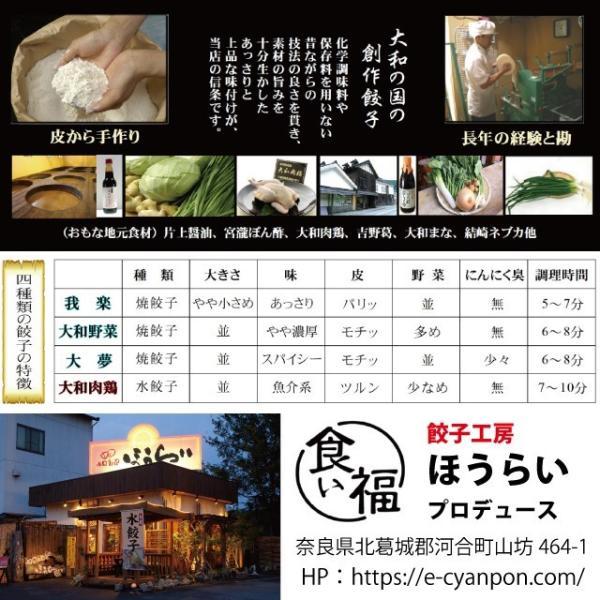 4種の創作餃子 食べ比べセット|kuihuku-hourai|05