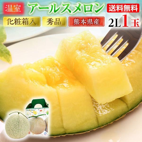 ギフト メロン アールスメロン 秀品 2L/1玉 熊本県産 温室 送料無料 高級メロン 産直 フルーツ 果物 甘い S常