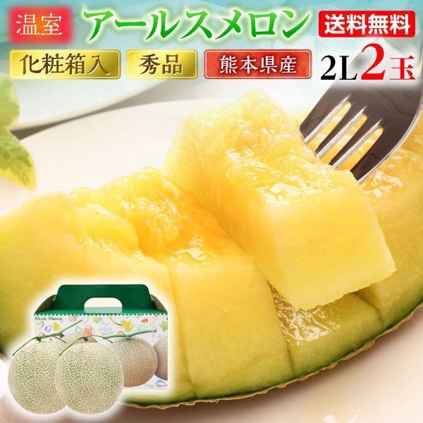 ギフト メロン アールスメロン 秀品 2L/2玉 熊本県産 温室 送料無料 高級メロン 産直 フルーツ 果物 甘い S常
