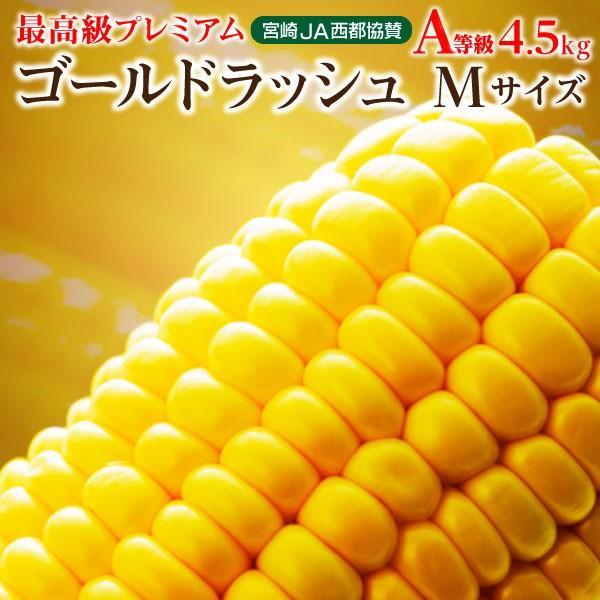 とうもろこし  ゴールドラッシュ Mサイズ  約4.5kg 宮崎 ヒルナンデスで紹介 JA西都協賛
