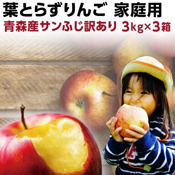 りんご 青森 葉とらず サンふじ ご家庭用 約9kg 約3kg×3箱ちょっぴり 訳あり 送料無料 産直 世界が認めたリンゴ Y常