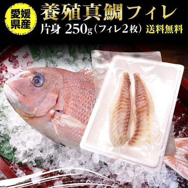 鯛 刺身 フィレ マダイ 真鯛 フィレ(皮無し)2枚 250g 送料無料 海鮮 魚介 冷凍 真空パック Y凍