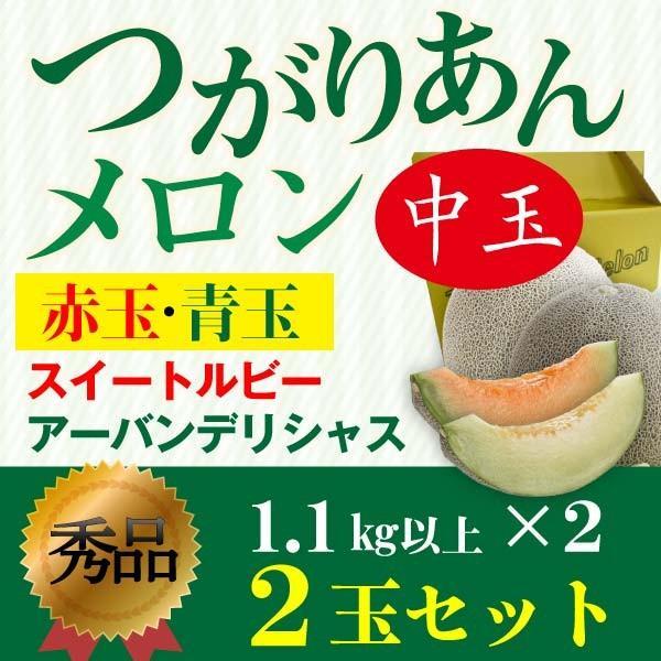 お中元 ギフト フルーツ メロン つがりあんメロン 青森産 秀品 1.1kg×2玉 スイートルビー&アーバンデリシャス Lサイズ ギフト Y常
