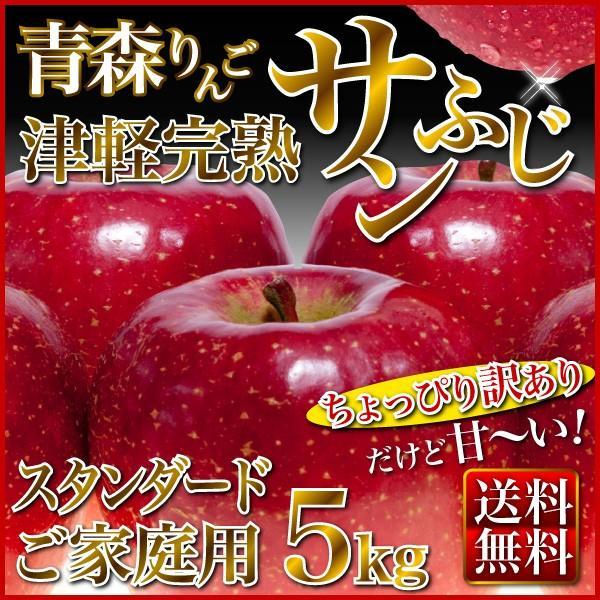 りんご 津軽完熟 サンふじりんご 青森県 ご家庭用 5kg  送料無料  リンゴ 林檎 フルーツ 果物 Y常
