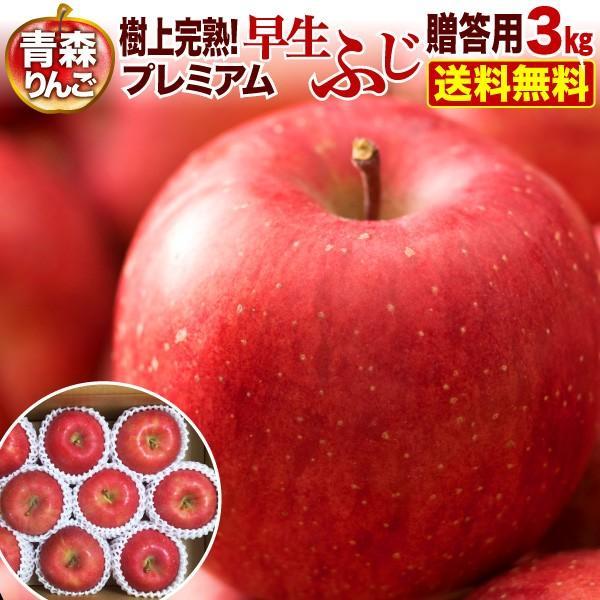 りんご 青森 津軽 早生ふじ 樹上完熟プレミアム 3kg(8〜12玉)贈答用 ギフト プレゼント 送料無料 農家直送 リンゴ 果物 フルーツ Y常