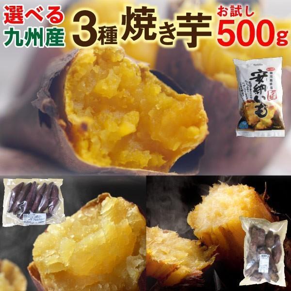 選べる焼き芋 500g×1袋 冷やし焼き芋 安納芋 シルクスイート 紅はるか 鹿児島県産 送料無料 クール