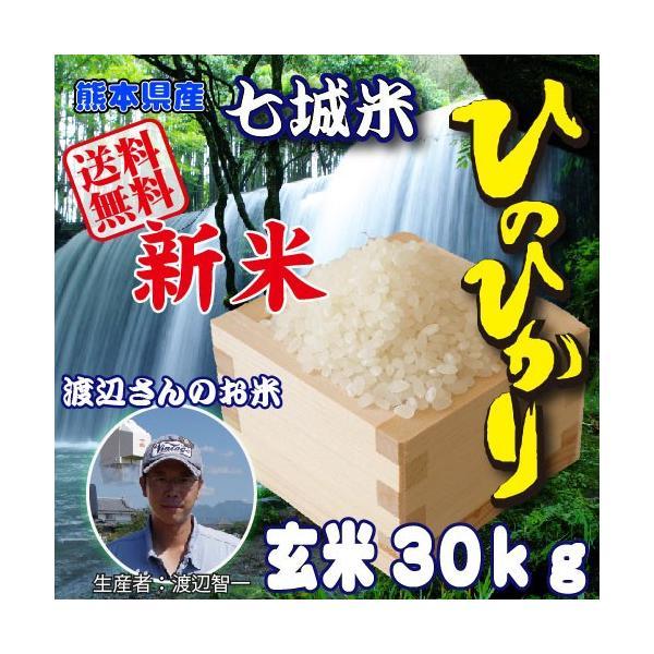 ヒノヒカリ 熊本県産 七城米(渡辺米) ひのひかり 玄米30kg