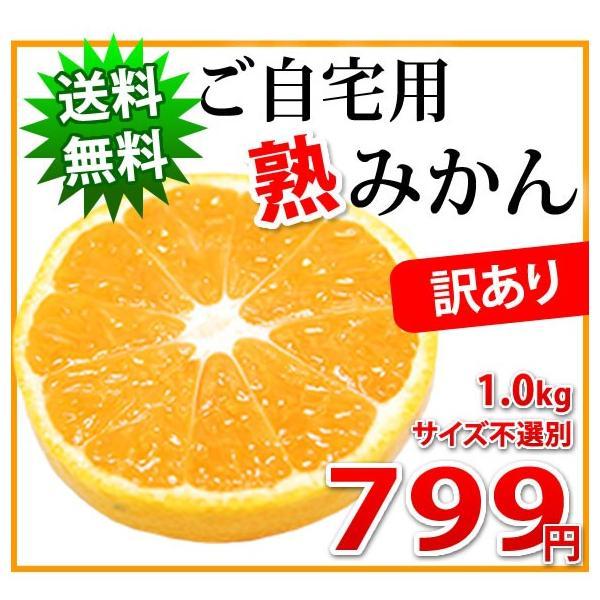 訳あり「熟」みかん 1kg 熊本県産 2セット購入で送料無料とおまけ 4セット購入でW増量!4セットおまけ 訳ありみかん ご自宅用に kumamoto-gurume