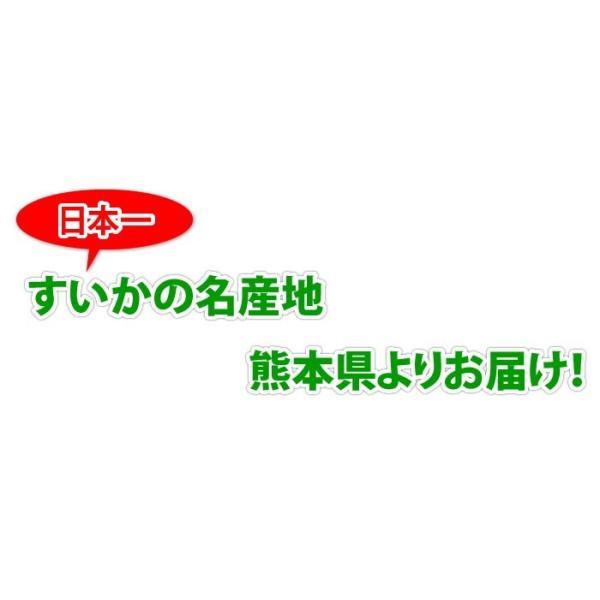 熊本県産 ご自宅用 訳あり 小玉 すいか 2玉 送料無料|kumamoto-gurume|05
