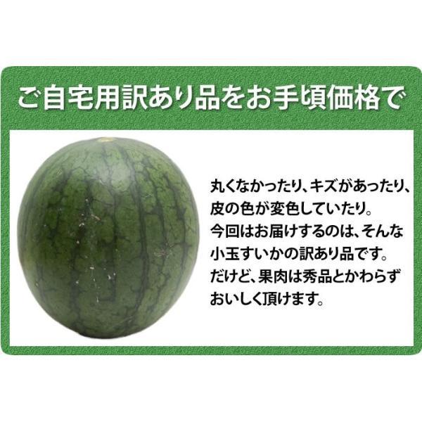 熊本県産 ご自宅用 訳あり 小玉 すいか 2玉 送料無料|kumamoto-gurume|07