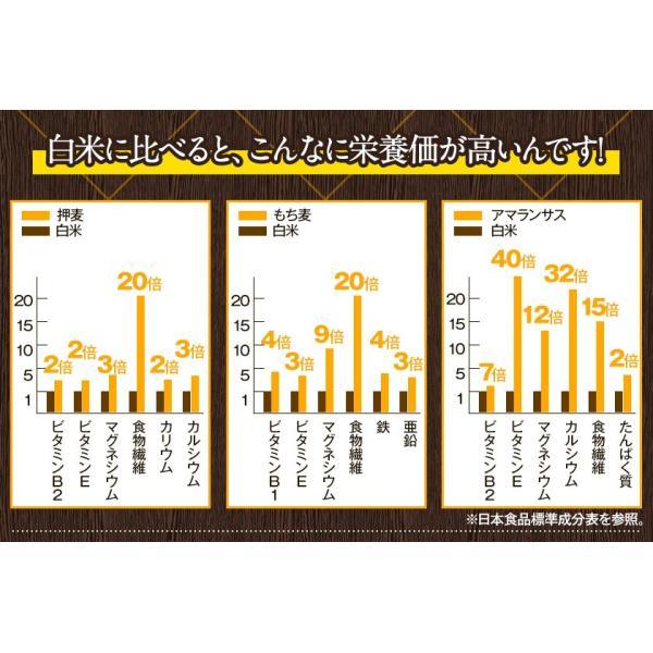 くまモン袋 国産 二十一雑穀米 米 500g 入り 送料無料 大麦 もち麦入り 熊本県産 発芽玄米使用 グルメ 3-7営業日以内に出荷予定(土日祝日除く)|kumamotofood|14