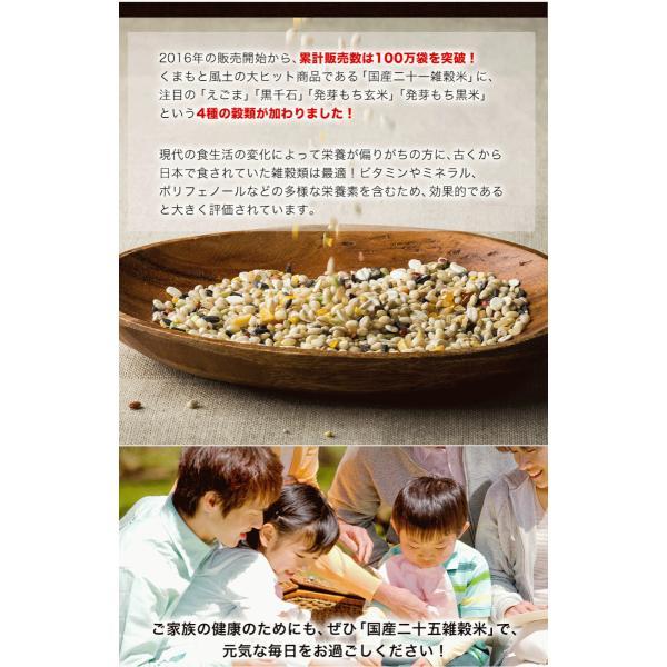 くまモン袋 国産 二十一雑穀米 米 500g 入り 送料無料 大麦 もち麦入り 熊本県産 発芽玄米使用 グルメ 3-7営業日以内に出荷予定(土日祝日除く)|kumamotofood|03