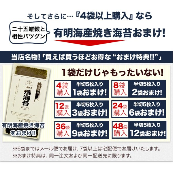 くまモン袋 国産 二十一雑穀米 米 500g 入り 送料無料 大麦 もち麦入り 熊本県産 発芽玄米使用 グルメ 3-7営業日以内に出荷予定(土日祝日除く)|kumamotofood|05