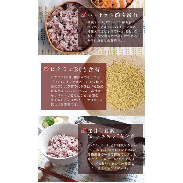 くまモン袋 国産 二十一雑穀米 米 500g 入り 送料無料 大麦 もち麦入り 熊本県産 発芽玄米使用 グルメ 3-7営業日以内に出荷予定(土日祝日除く)|kumamotofood|09