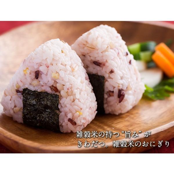 くまモン袋の 国産 二十一雑穀米 たっぷり1kg(500g×2袋)入  送料無料 大麦 もち麦入り 熊本県産の発芽玄米使用 3-7営業日以内に出荷予定(土日祝日除く) kumamotofood 14
