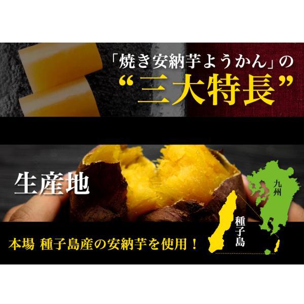 焼き安納芋ようかん4袋セット(1袋=50g×3本入り)安納芋の本場種子島産使用 順次出荷 3-7営業日以内に出荷予定(土日祝日除く)|kumamotofood|07