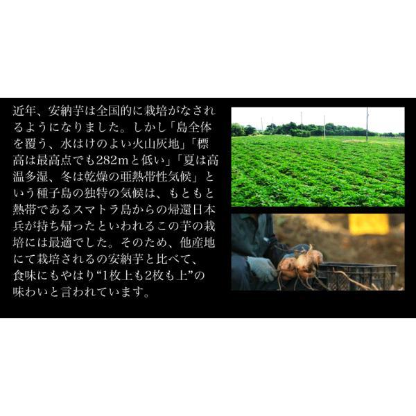 焼き安納芋ようかん4袋セット(1袋=50g×3本入り)安納芋の本場種子島産使用 順次出荷 3-7営業日以内に出荷予定(土日祝日除く)|kumamotofood|08