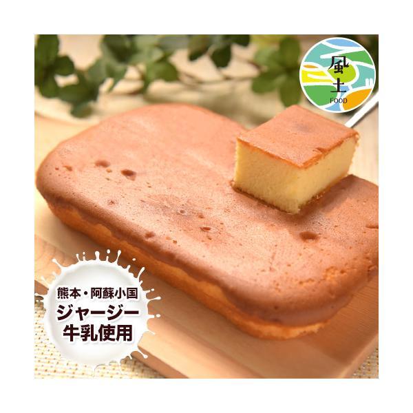 濃厚風味 希少なジャージー牛乳使用 阿蘇ジャージーチーズケーキ1個 2セット以上でおまけ特典 送料無料 3-7営業日以内に出荷(土日祝日除く)|kumamotofood
