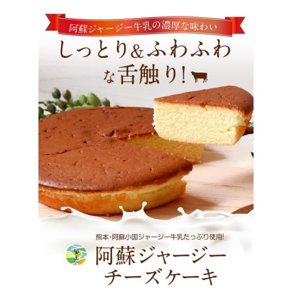濃厚風味 希少なジャージー牛乳使用 阿蘇ジャージーチーズケーキ1個 2セット以上でおまけ特典 送料無料 3-7営業日以内に出荷(土日祝日除く)|kumamotofood|02