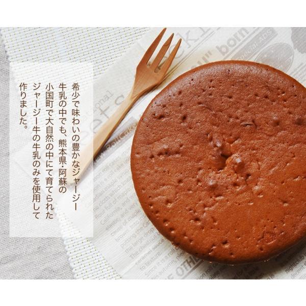 濃厚風味 希少なジャージー牛乳使用 阿蘇ジャージーチーズケーキ1個 2セット以上でおまけ特典 送料無料 3-7営業日以内に出荷(土日祝日除く)|kumamotofood|11