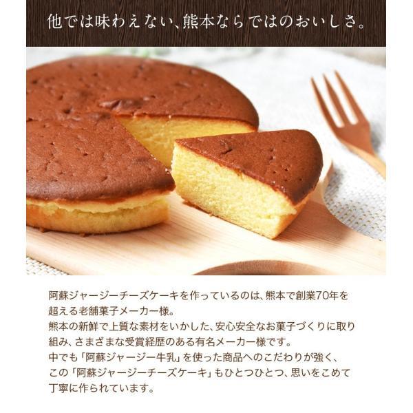 濃厚風味 希少なジャージー牛乳使用 阿蘇ジャージーチーズケーキ1個 2セット以上でおまけ特典 送料無料 3-7営業日以内に出荷(土日祝日除く)|kumamotofood|12