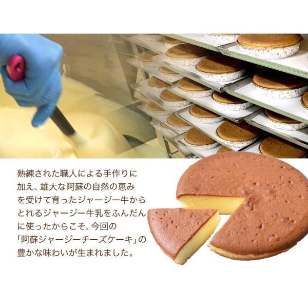 濃厚風味 希少なジャージー牛乳使用 阿蘇ジャージーチーズケーキ1個 2セット以上でおまけ特典 送料無料 3-7営業日以内に出荷(土日祝日除く)|kumamotofood|13