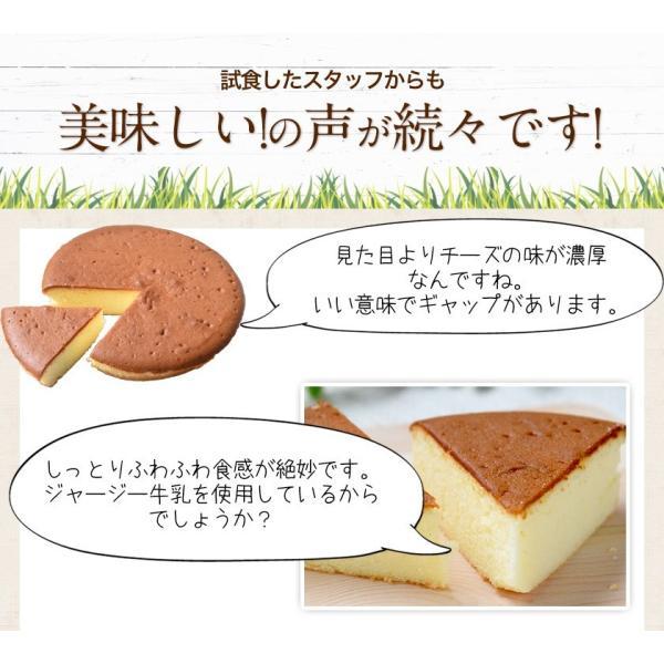濃厚風味 希少なジャージー牛乳使用 阿蘇ジャージーチーズケーキ1個 2セット以上でおまけ特典 送料無料 3-7営業日以内に出荷(土日祝日除く)|kumamotofood|14