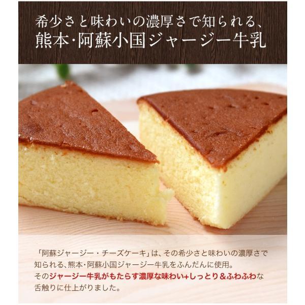 濃厚風味 希少なジャージー牛乳使用 阿蘇ジャージーチーズケーキ1個 2セット以上でおまけ特典 送料無料 3-7営業日以内に出荷(土日祝日除く)|kumamotofood|03