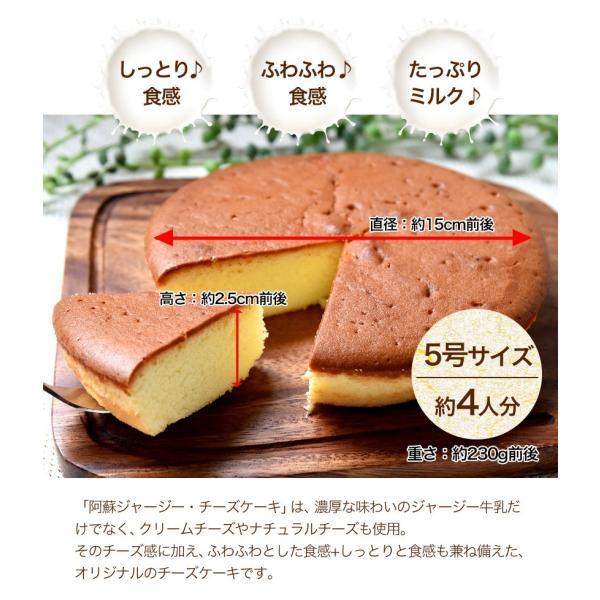 濃厚風味 希少なジャージー牛乳使用 阿蘇ジャージーチーズケーキ1個 2セット以上でおまけ特典 送料無料 3-7営業日以内に出荷(土日祝日除く)|kumamotofood|04