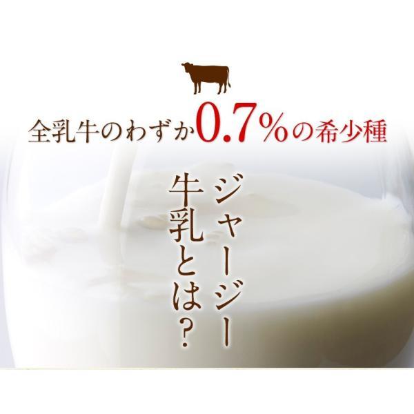 濃厚風味 希少なジャージー牛乳使用 阿蘇ジャージーチーズケーキ1個 2セット以上でおまけ特典 送料無料 3-7営業日以内に出荷(土日祝日除く)|kumamotofood|05