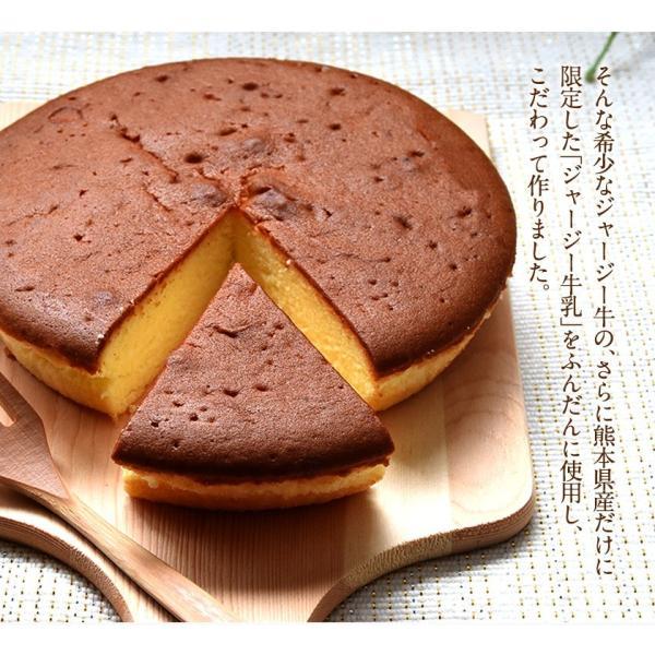 濃厚風味 希少なジャージー牛乳使用 阿蘇ジャージーチーズケーキ1個 2セット以上でおまけ特典 送料無料 3-7営業日以内に出荷(土日祝日除く)|kumamotofood|07