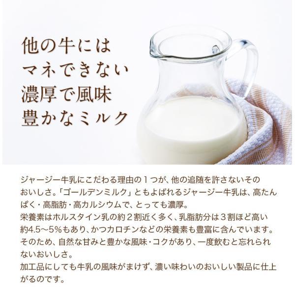 濃厚風味 希少なジャージー牛乳使用 阿蘇ジャージーチーズケーキ1個 2セット以上でおまけ特典 送料無料 3-7営業日以内に出荷(土日祝日除く)|kumamotofood|08