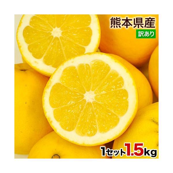 河内晩柑和製グレープフルーツ1.5kg訳ありフルーツみかん旬3-7営業日以内に出荷(土日祝日除く)