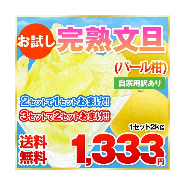 送料無料!お試し完熟文旦(パール柑)2kgまろやかな甘さと爽やかな香りで大人気!2セット購入で1セット分おまけ(訳あり)《3月末頃-4月中旬頃より順次出荷》|kumamotofood
