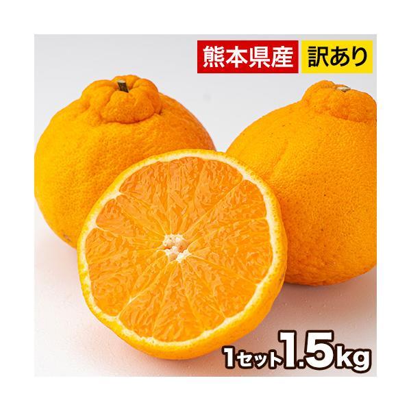 デコみかん 1.5kg 訳あり 送料無料 デコ みかん デコポン 同品種 熊本県産 旬 の みかん 柑橘 産地直送 取り寄せ 箱 3月中旬-3月末頃より順次出荷予定|kumamotofood