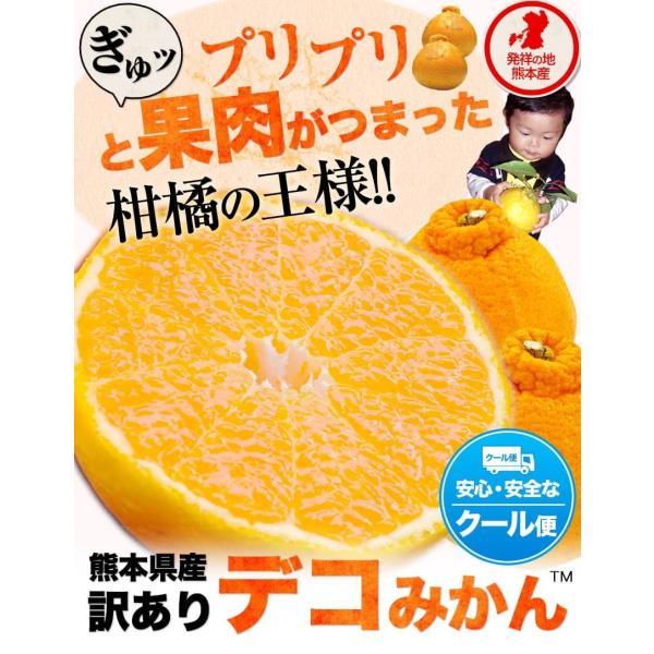 デコみかん 1.5kg 訳あり 送料無料 デコ みかん デコポン 同品種 熊本県産 旬 の みかん 柑橘 産地直送 取り寄せ 箱 3月中旬-3月末頃より順次出荷予定|kumamotofood|02