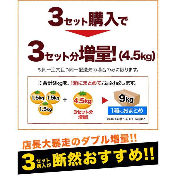 デコみかん 1.5kg 訳あり 送料無料 デコ みかん デコポン 同品種 熊本県産 旬 の みかん 柑橘 産地直送 取り寄せ 箱 3月中旬-3月末頃より順次出荷予定|kumamotofood|12